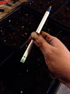 "This pen is marked with 1/8"", 1/4"", and 1/2"" so I can easily control how deep my seeds are planted."